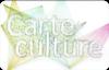 Consulter le site de la Carte Culture
