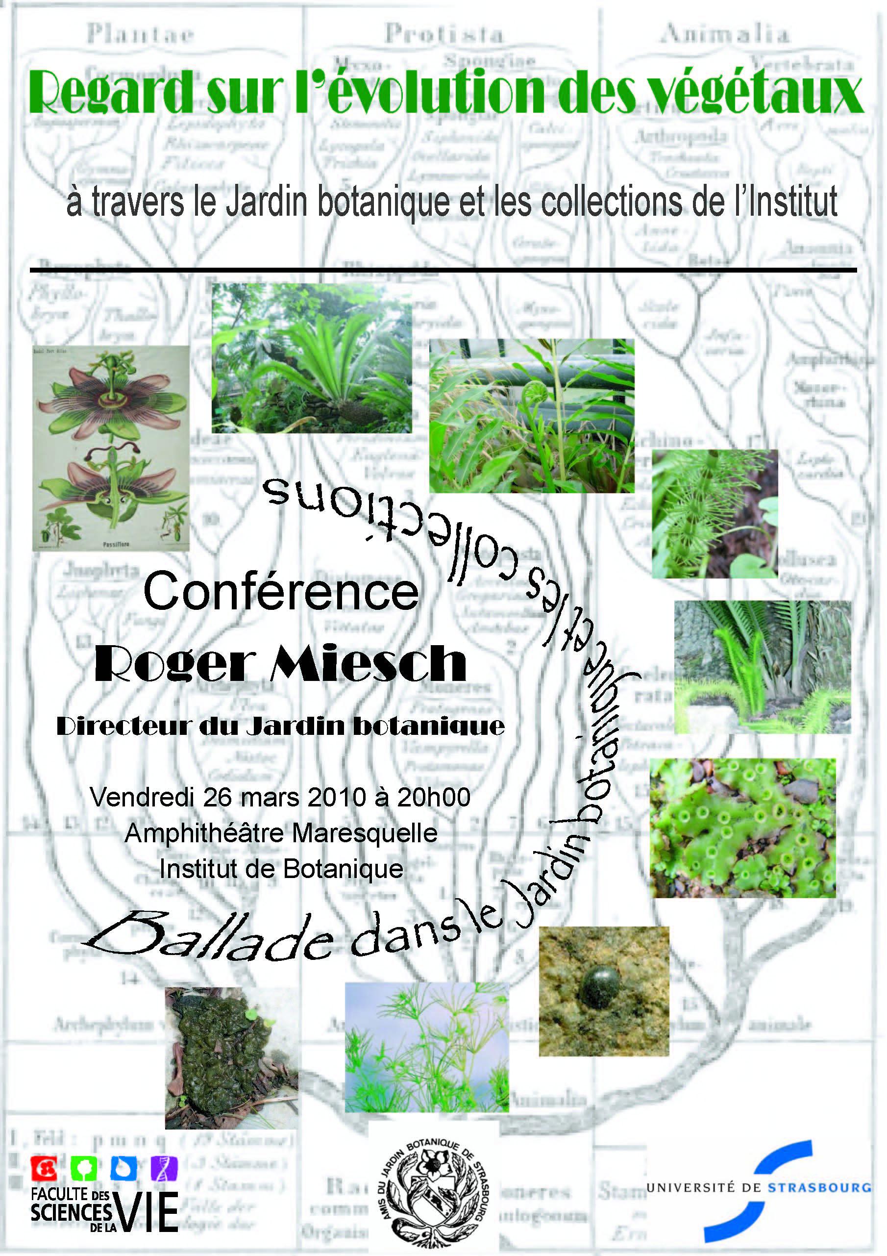 Université de Strasbourg Conférence Regard sur l évolution des